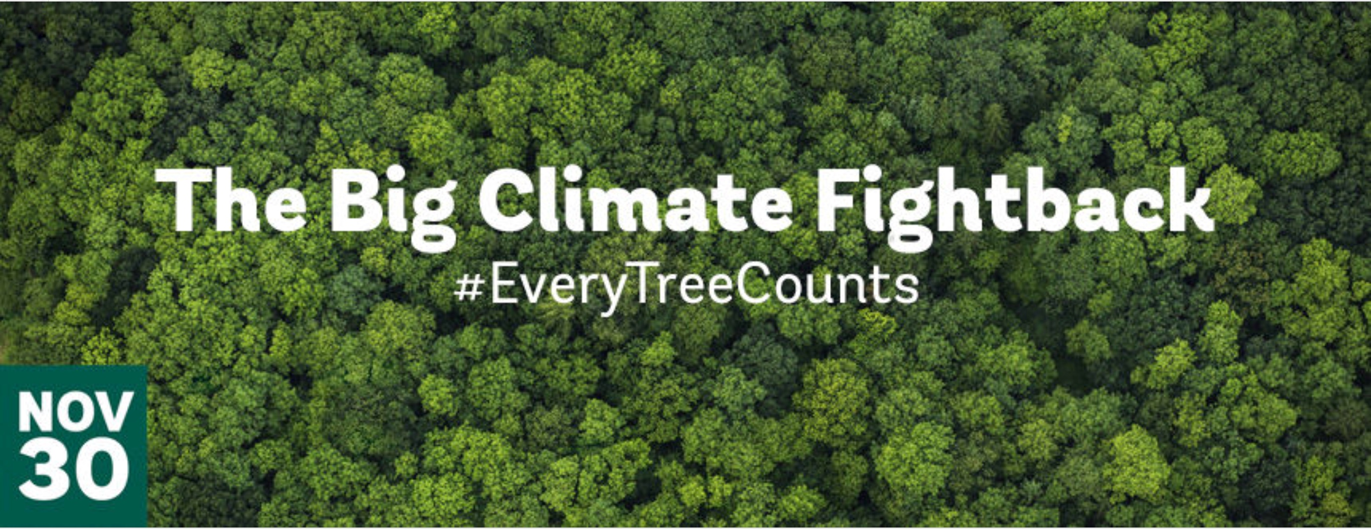 Help me support 1 million people in UK's largest mass tree planting campaign