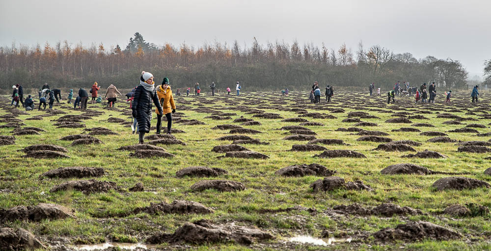 10,000 Trees Planted at The Young People's Forest