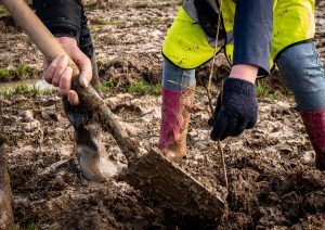 1000s of New Trees to Fight Climate Change