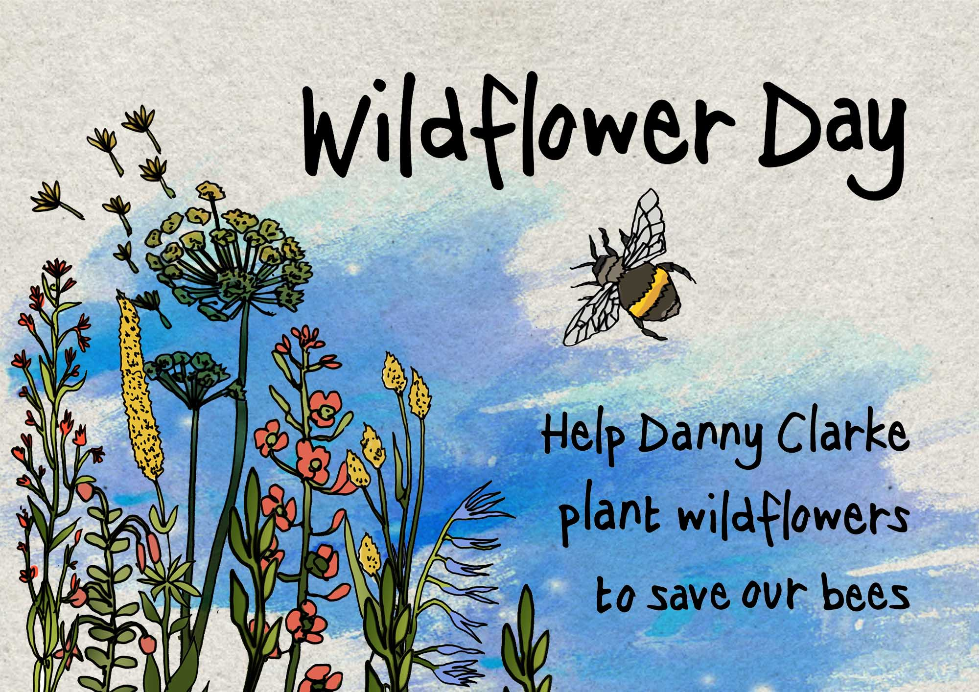 Danny Clarke's National Wildflower Day